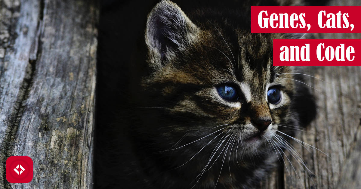 Genes, Cats, and Code Featured Image