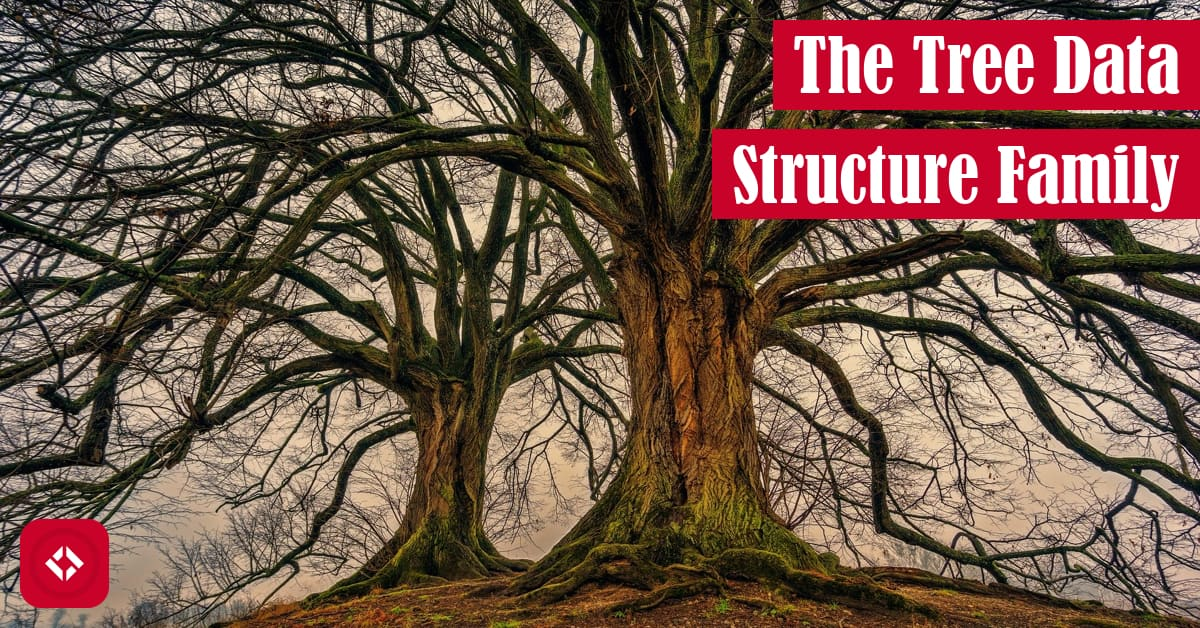 The Tree Data Structure Featured Image