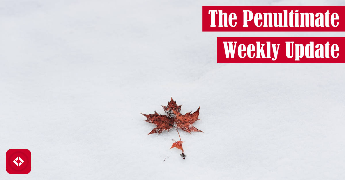 The Penultimate Weekly Update Featured Image