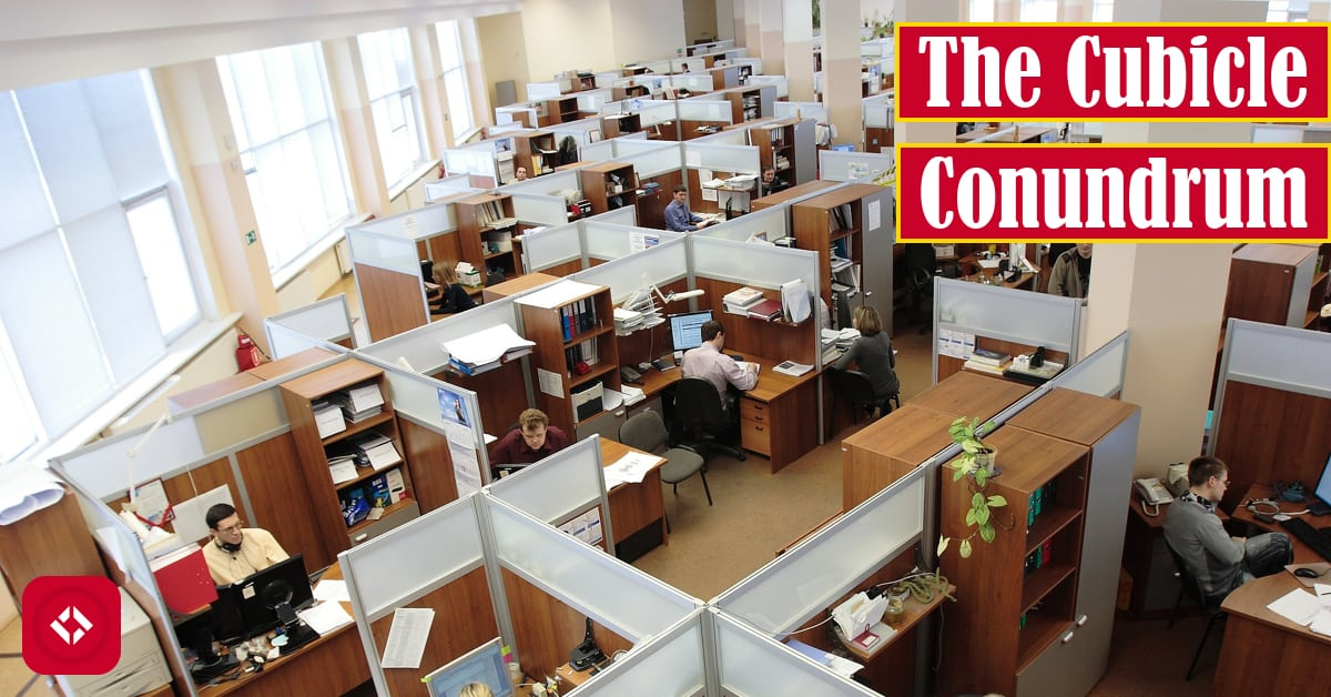 The Cubicle Conundrum Featured Image