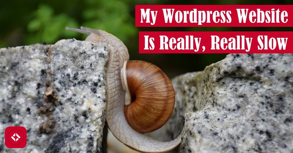 My WordPress Website Is Really, Really Slow Featured Image