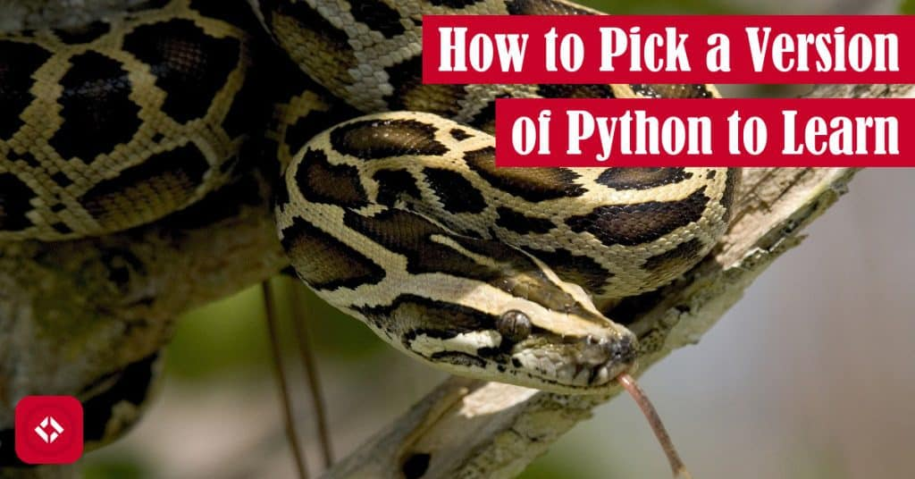 How to Pick a Version of Python to Learn Featured Image