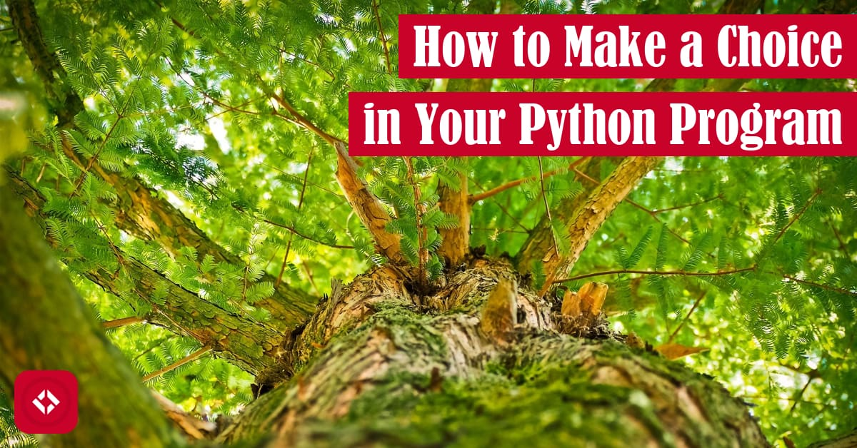 How to Make a Choice in Your Python Program Featured Image
